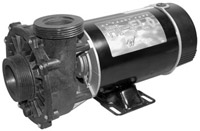 3421221-10, Waterway Pump