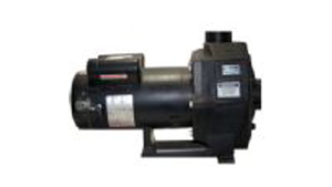 Hayward 3500 Pumps used on Sundance® Spas  1993-1995